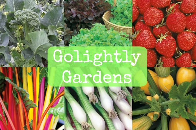 Golightly Gardens 2017