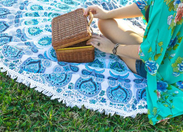 National Picnic Week how to avoid common problems and epic fails