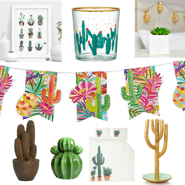 Cactus theme home makeover on a budget pic 2
