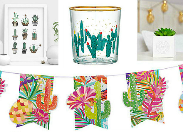 Cactus theme home makeover on a budget pic 3