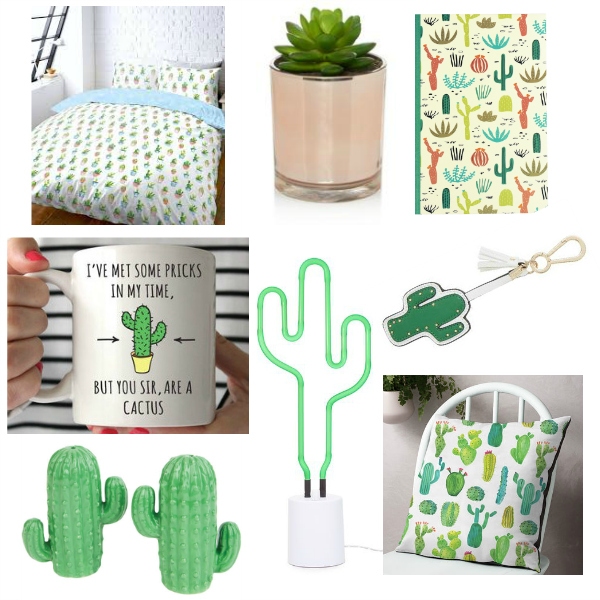cactus home makeover on a budget part 1